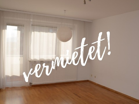 Ein-Zimmer-Wohnung mit Donaublick