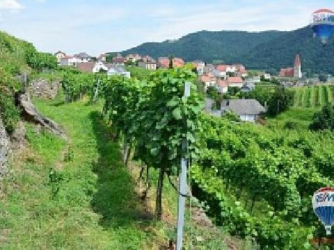 Haus in 3610 Weißenkirchen in der Wachau, Niederösterreich, Ihr Traum vom eigenen Weingut