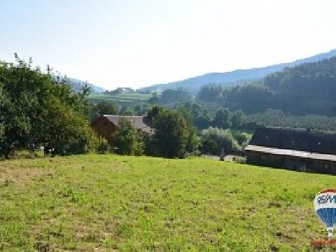 Baugrund Eigenheim in Trandorf, Niederösterreich