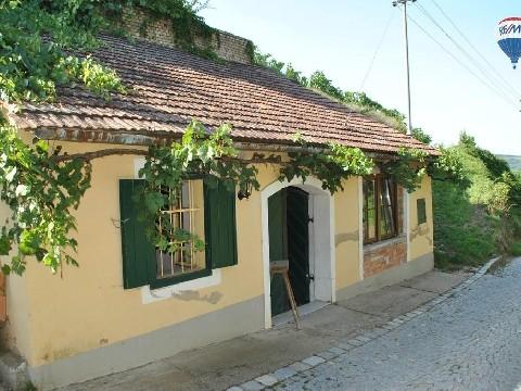 Weinkeller und Weingarten in einer der schönsten Lagen von Gobelsburg
