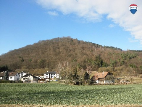 Landwirtschaft/Bauernhof/Forstw. in Seeb, Niederösterreich