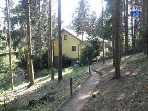 Unikat - Wohnen im Wald