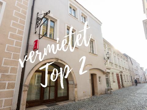 Gemütliche Singlewohnung - Steiner Landstraße Top 2