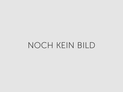 Reihenhaus in Krems